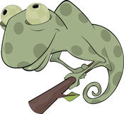 Big green Chameleon cartoon. Spotty chameleon sitting on a branch Stock Images