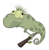 Big green Chameleon cartoon. Big spotty Chameleon with green hair Stock Photo