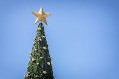 Big green christmas tree on blue sky Stock Photos