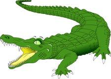 Free Big Green Crocodile Royalty Free Stock Photography - 85604057