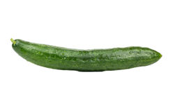 Big green cucumber. Big and long green cucumber isolated on white background royalty free stock image