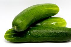 Big green cucumbers stock images