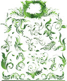 Big green floral collection. Vector illustration of big green floral collection Royalty Free Stock Photography