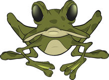 The big green frog. Cartoon Royalty Free Stock Photo