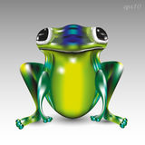 Big green frog. Image of a reptile big eyes paws animal amphibious fantasy style bright picture Stock Photography