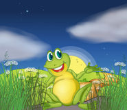 A big green frog at the road. Illustration of a big green frog at the road Stock Image