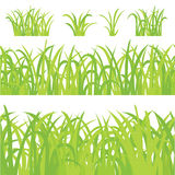 Big Green Grass,  On White Background. Nature background with green grass. Vector Illustration Royalty Free Stock Photo