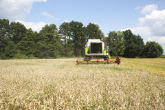 A big green harvester Royalty Free Stock Images
