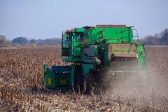Big green harvester in the field on a sunny day mowing ripe, dry sunflower seeds. Royalty Free Stock Photos