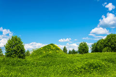 Big green hill with yellow flowers. Royalty Free Stock Photos