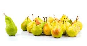 Big green pear - leader of pears team Stock Image