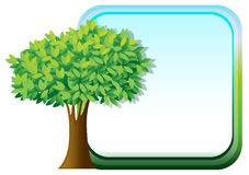 A big green tree beside an empty template Stock Image
