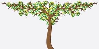 Big Green Tree. Vector Stock Photos