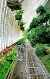 Big greenhouse Stock Photography