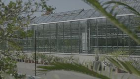 Big greenhouse with glass walls, foundations, gable roof, garden bed. stock video footage