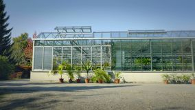 Big greenhouse with glass walls, foundations, gable roof, garden bed. stock video