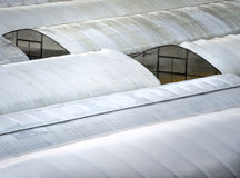 Big greenhouses covered with plastic foil Royalty Free Stock Photography