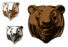 Big grizzly bear. Head in cartoon style for sports mascot design vector illustration