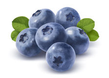 Big group of blueberries  on white background Royalty Free Stock Images