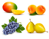 Big group of different fruit. Stock Photos