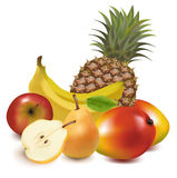 Big group of exotic fruit. Royalty Free Stock Image