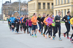 Big group of runners in the Stockholm. Royalty Free Stock Images