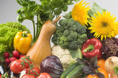Big group of vegetable food objects. Close-up Royalty Free Stock Images