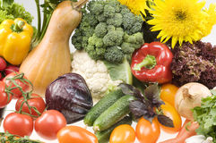 Big group of vegetable food objects Stock Photography