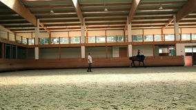 Big hall for training young girl riding horse for equestrianism stock video