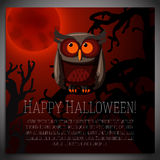 Big halloween banner with illustration of brown Royalty Free Stock Photography