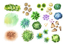 Big hand drawn garden plants set. Elements of landscape design. Watercolor hand-drawn illustration Royalty Free Stock Photos