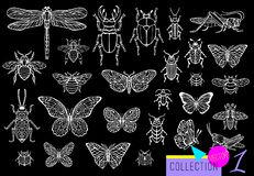 Free Big Hand Drawn Line Set Of Insects Bugs, Beetles, Honey Bees, Butterfly Moth, Bumblebee, Wasp, Dragonfly, Grasshopper. Stock Photography - 134223752