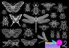 Free Big Hand Drawn Line Set Of Insects Bugs, Beetles, Honey Bees, Butterfly Moth, Bumblebee, Wasp, Dragonfly, Grasshopper. Royalty Free Stock Image - 134223796