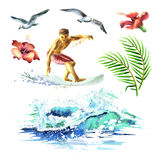 Big hand drawn watercolor set with young surfers, ocean wave, palm branch, gulls and hibiscus flowers Stock Images