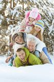 Family in winter park. Big happy family having fun in winter park covered with snow Stock Photography