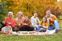 Big happy family on picnic Stock Photography