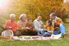 Big happy family on picnic. In autumn royalty free stock photography