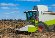 Big harvester in the field on a sunny day mowing ripe, dry sunflower Stock Photography