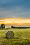 Big hay bale rolls in a lush green field Royalty Free Stock Photo