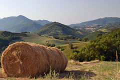 Big hay pack on a meadow Royalty Free Stock Photography