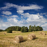 Big hay rolls on a beautiful field. Rural Landscape Stock Photo