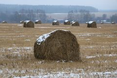 Hay rolls in the snow on a plowed field. Big hay rolls in the snow on a snow-covered empty plowed field Stock Image