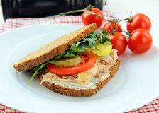 Big healthy sandwiches made with whole grain bread Royalty Free Stock Images