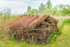 Big heap with bundled willow branches Stock Photo