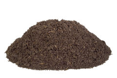 Big heap real soils with insects Stock Photography