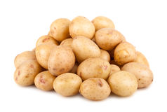Big heap of ripe potato Royalty Free Stock Image