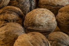 Big heap of walnuts with one white tinted walnut in the middle. On a wooden board in a studio stock image