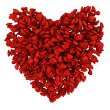 Big heart Royalty Free Stock Photography