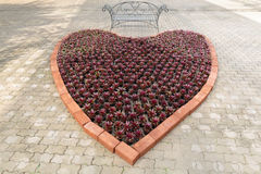 Big heart on the floor. Big heart decorated on the cement blocks floor made of flowerpots royalty free stock image