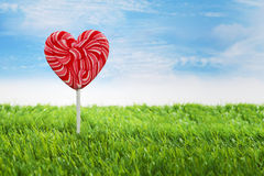 Big heart lollipop horizontal Stock Images